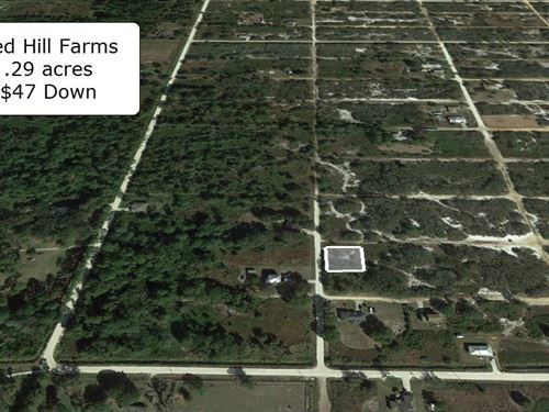 .29 Acre Corner Lot Near Lakes : Avon Park : Highlands County : Florida