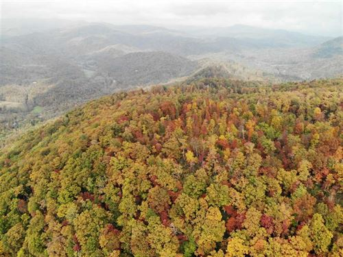 13.37 Acres in Black Mountain : Black Mountain : Buncombe County : North Carolina