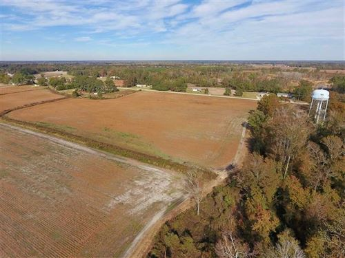 235.85 Acres of Farm And Timber LA : Dover : Craven County : North Carolina