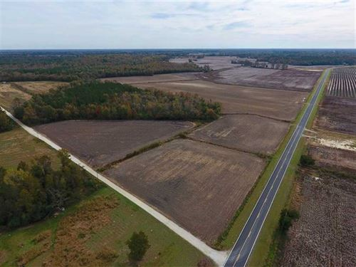 90.1 Acres of Farm And Timber Land : Dover : Craven County : North Carolina