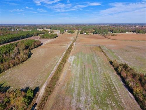20.68 Acres of Farm And Hunting LA : Dover : Craven County : North Carolina