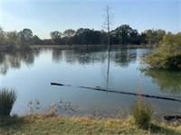 Arkansas County Hunting Property : Dewitt : Arkansas County : Arkansas