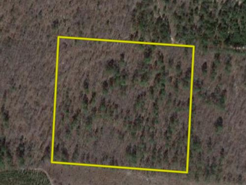 14 Acres Marlboro County SC : Bennettsville : Marlboro County : South Carolina
