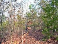 38 Acres Marlboro County SC : Bennettsville : Marlboro County : South Carolina