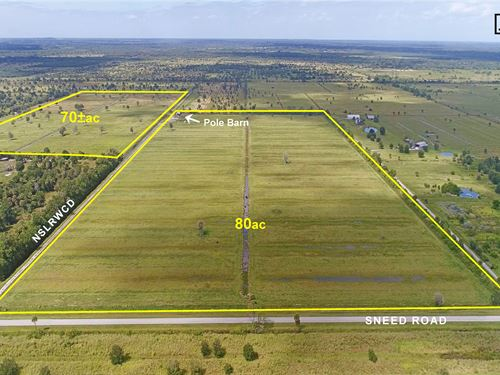 Turn Key Cattle Grazing Operation : Fort Pierce : Saint Lucie County : Florida