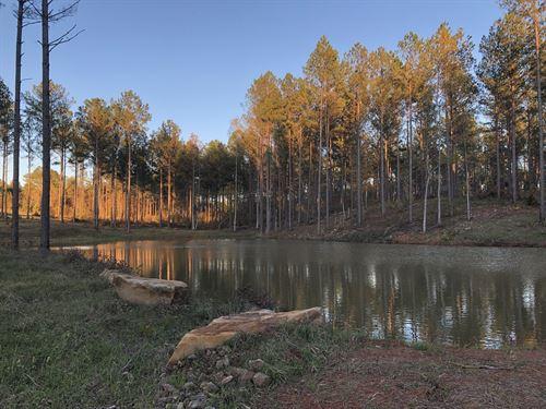 Farmville Rd Lee County : Waverly : Lee County : Alabama