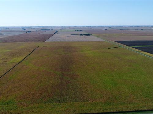 Champaign County Farmland Auction : Gifford : Champaign County : Illinois