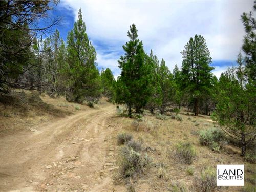 Secluded 5Ac Near National Forest : Beatty : Klamath County : Oregon