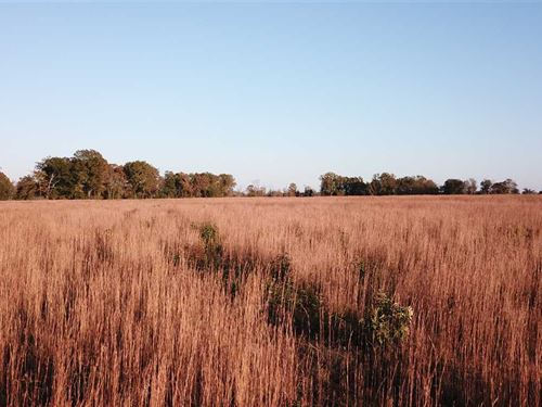 82 Acres in Faulkner County : Enola : Faulkner County : Arkansas
