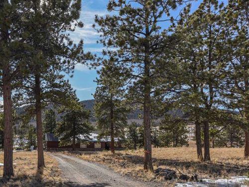 Borders Us National Forest : Buena Vista : Chaffee County : Colorado