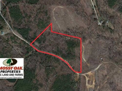 10.8 Acres of Timber And Hunting : Milton : Caswell County : North Carolina