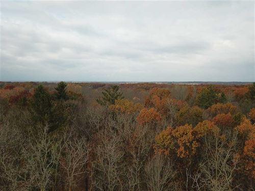 Southern Michigan Hunting Gem : Olivet : Eaton County : Michigan
