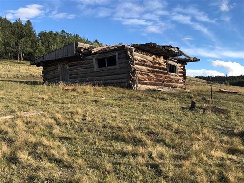 Colorado Mountain / Ranch / Hunting : Hartsel : Park County : Colorado