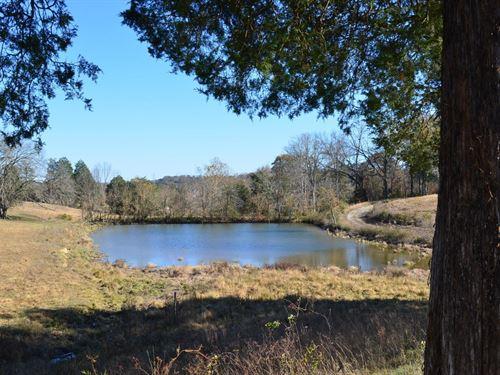 122 Acre Farm in Rogersville, TN : Rogersville : Hawkins County : Tennessee