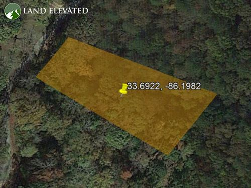 .61 Forested Acres in Lincoln, AL : Lincoln : Talladega County : Alabama