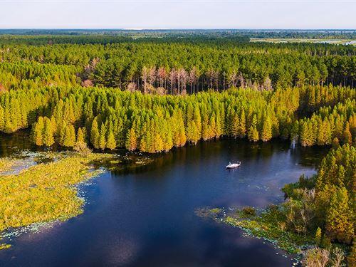 Suwannee Valley Plantation : White Springs : Hamilton County : Florida