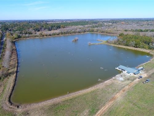 Big Lake Tract : Newbern : Hale County : Alabama