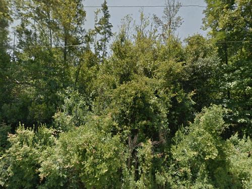 Large Private Lot, No 171 : Crystal River : Citrus County : Florida
