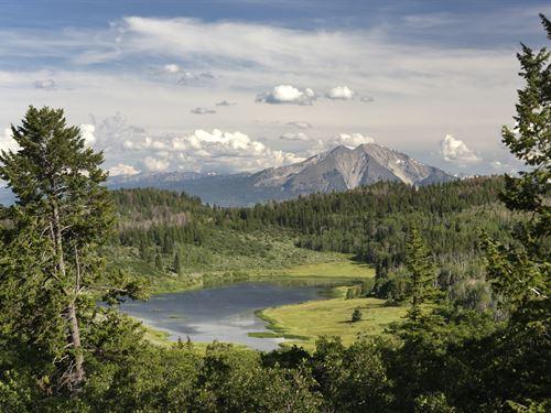 Black Bear Ranch : Glenwood Springs : Pitkin County : Colorado