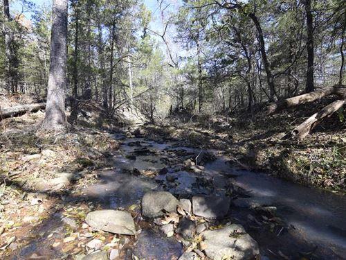 Whiskey Creek Bottom 40 Acres Recr : Moyers : Pushmataha County : Oklahoma