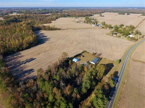 23.81 Acres of Farm Land For Sale : Dover : Craven County : North Carolina