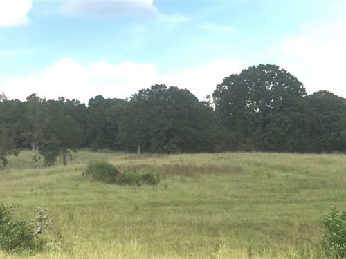 120 Acres In Carroll County In McCa : McCarley : Carroll County : Mississippi