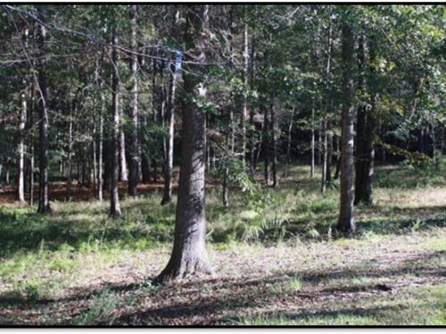 1.0255 Acre Lot In Forrest County : Hattiesburg : Forrest County : Mississippi