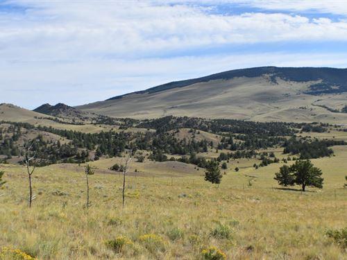 Colorado Mountain Land Ranch : Guffey : Park County : Colorado