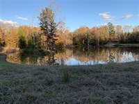127.3 Acres, Fairfield County, SC : Winnsboro : Fairfield County : South Carolina
