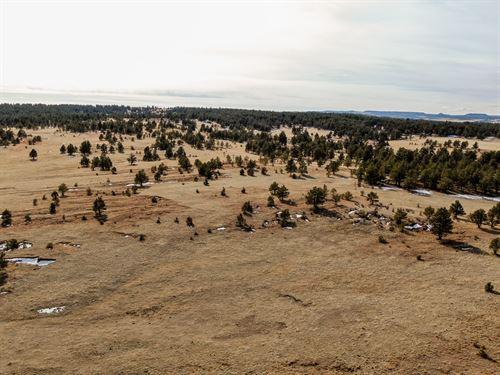 Wolf's Station Gulch Ranch : Calhan : Elbert County : Colorado