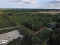 Shirley Plantation 14 Acre Homesite : Snow Hill : Greene County : North Carolina