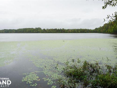 Tuskegee Conners Lake Hunting & Tim : Tuskegee : Macon County : Alabama