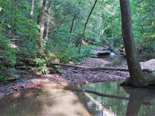 Old Creekside Ozark Homestead2 : Saint Joe : Searcy County : Arkansas