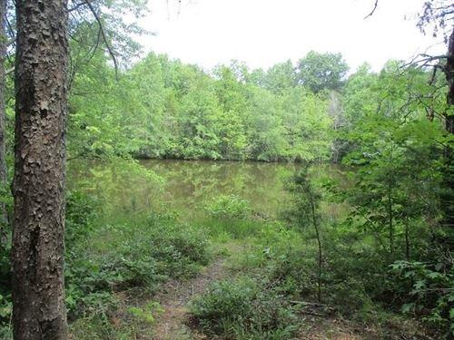 Great Rural Property : Buckingham : Virginia