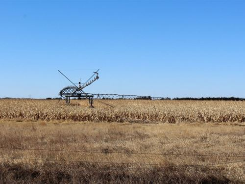 Highway 20 Pivots : Long Pine : Brown County : Nebraska