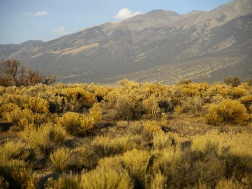 Mount Blanca Views : Alamosa : Colorado