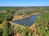 Timber & Hunting by Lake Sinclair : Eatonton : Putnam County : Georgia