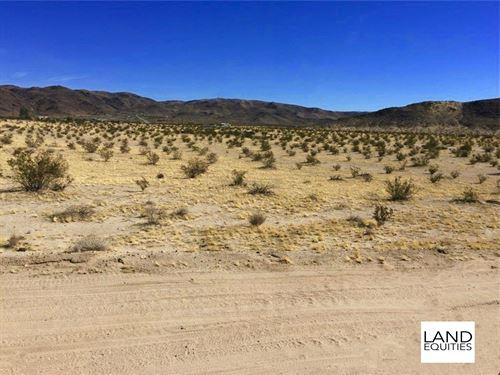 Great Location Backed By Blm : Twentynine Palms : San Bernardino County : California