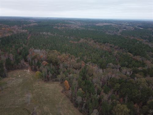 115 +/- Beautiful Acres : Five Points : Chambers County : Alabama