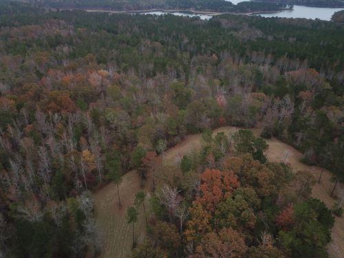 40 +/- Acre Minifarm With Pond : Lanett : Chambers County : Alabama