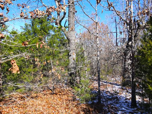 Acreage For Sale in Mammoth Spring : Mammoth Spring : Fulton County : Arkansas