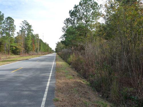 Joseph North : Greeleyville : Williamsburg County : South Carolina