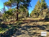 Community Well Near National Forest : Bonanza : Klamath County : Oregon