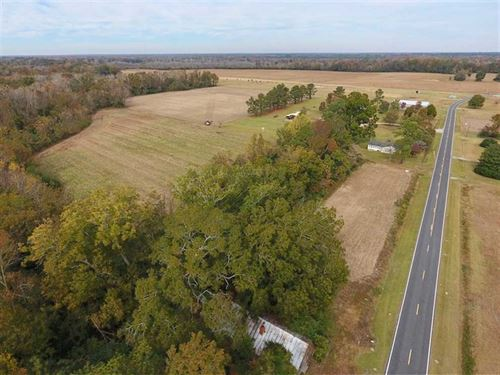 48.26 Acres of Hunting And Farm LA : Dover : Craven County : North Carolina