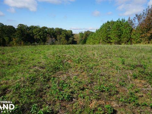 Billingsley Timber And Hunting Trac : Billingsley : Autauga County : Alabama