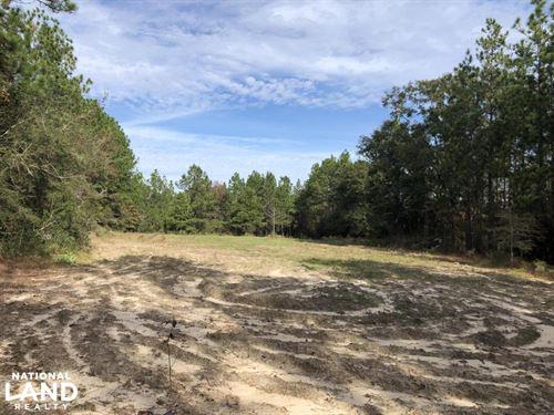 Sandy Ridge Rd Recreational And Hun : Citronelle : Mobile County : Alabama