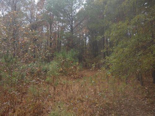 Chalmers Road : Sanford : Moore County : North Carolina