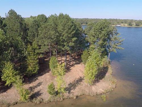 Waterfront Lake Lot : Huntingdon : Carroll County : Tennessee