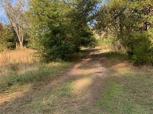Hunter's Paradise on 37 Acres : Union Point : Taliaferro County : Georgia