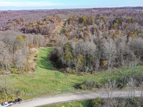 Gilmore Ridge Rd, 26 Acres : Cadiz : Harrison County : Ohio